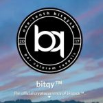 Bitqy Coin