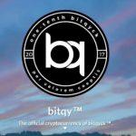 Bitqy Coin