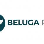 beluga pay ico