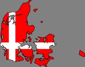 Danish Tax Council