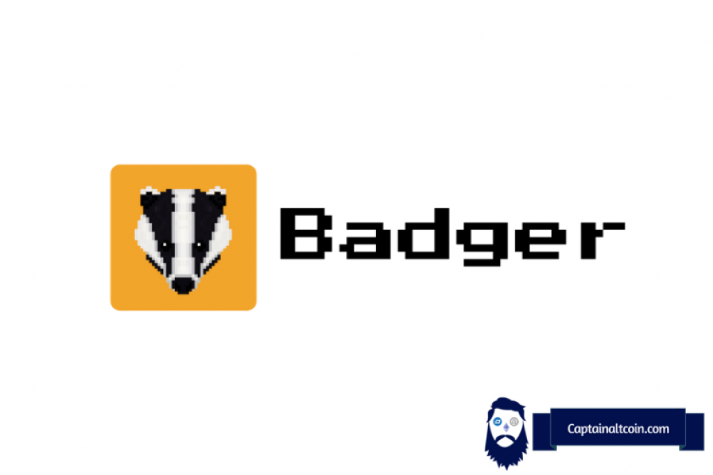 Badger Dao Review Price
