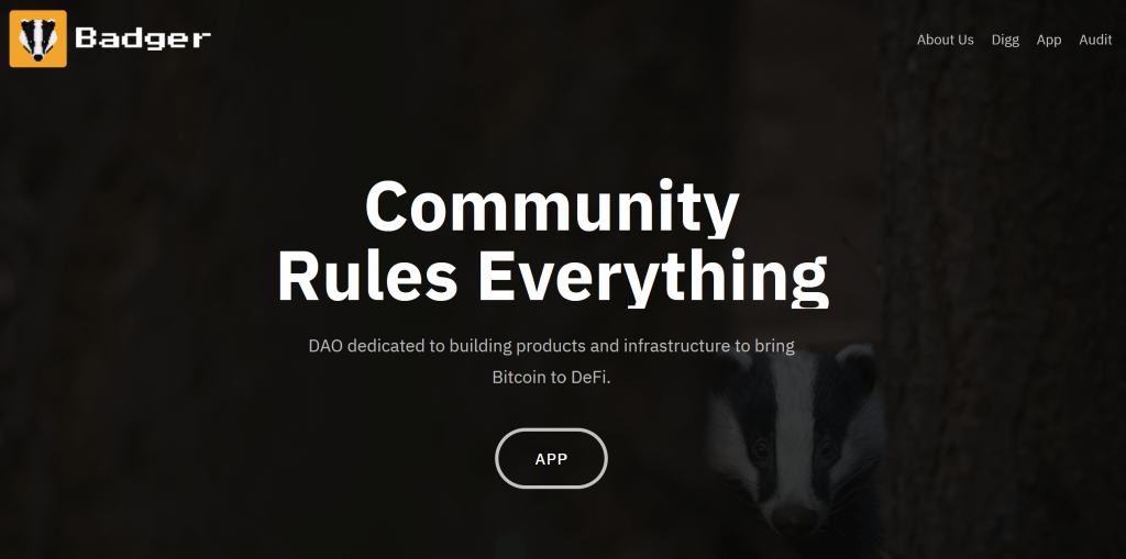 badger dao homepage